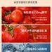 D'Einstein迪思坦西红柿红素软胶囊100粒